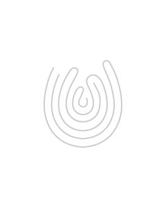 Belvedere Vodka Pure Silver ILLUMINATED Saber Magnum 1.75lt 'Happy New Year'